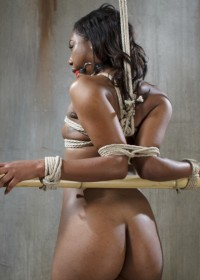Ebony beauty, Chanell contacted me to say that she was interested in shooting for us. I jumped at the chance to get this slut in my ropes. She is hot as hell and has an amazing ass, and I wanted to see her suffer.